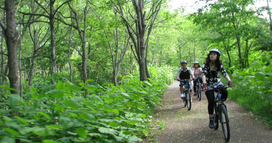 chalet-ivy-hirafu-adventures-summer-carousel-4